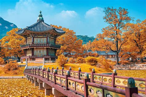 Flights to Seoul - Get United's Best Fares Today - United