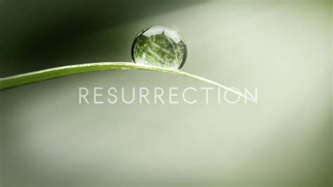 Resurrection wallpapers - HD wallpaper Collections
